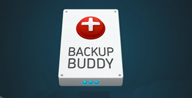Wordpress Plugin Backup
